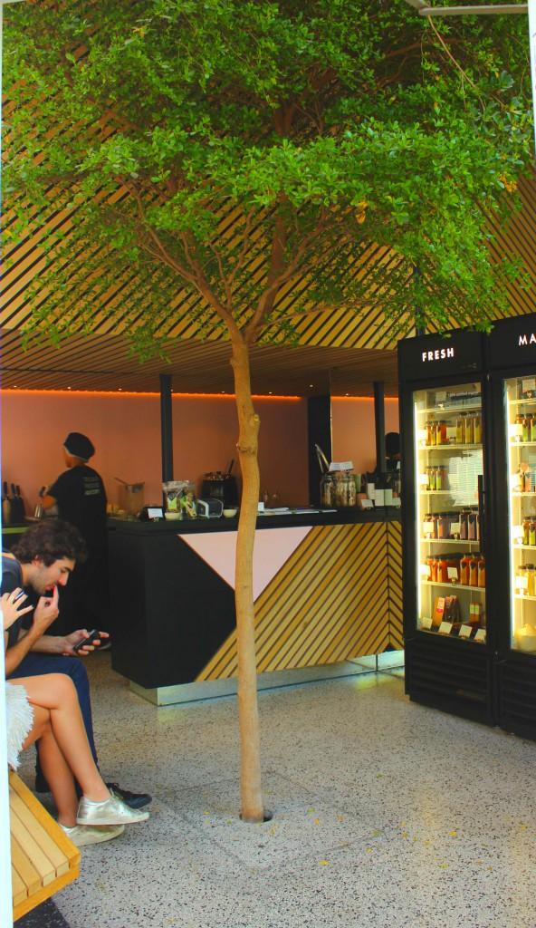 Juicebar: gesunde Snacks für 48 Stunden in Amsterdam